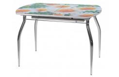 Стол обеденный Водолей-1 В1 (Ромашки)